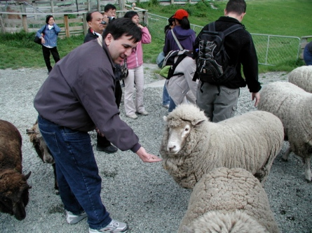 bill_closeup_feeding_the_friendly_sheep