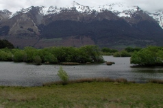 ducks_under_the_snowy_mountains