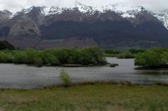 ducks_under_the_snowy_mountains