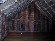Maori Elders House