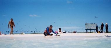viv_on_the_beach